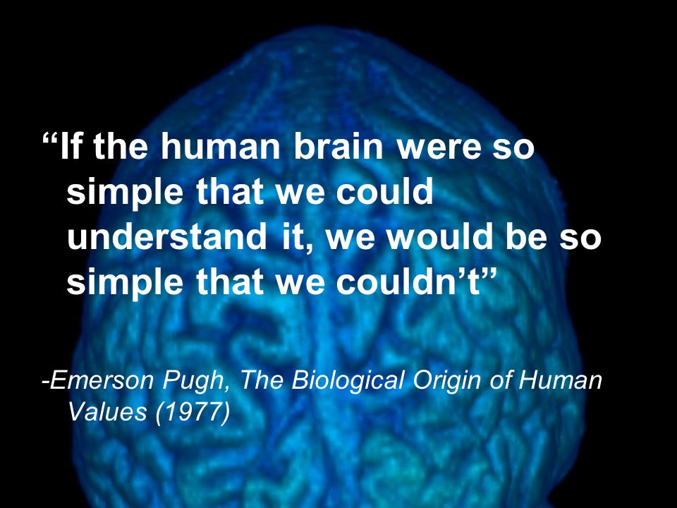 If the human brain were so simple that we could understand it, we would be so simple that we couldn't -Emerson Pugh, The Biological Origin of Human Values (1977)