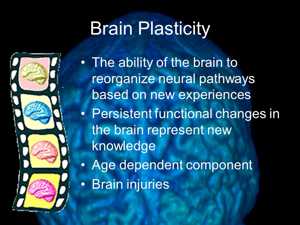 The ability of the brain to reorganize neural pathways based on new experiences Persistent functional changes in the brain represent new knowledge Age dependent component Brain injuries
