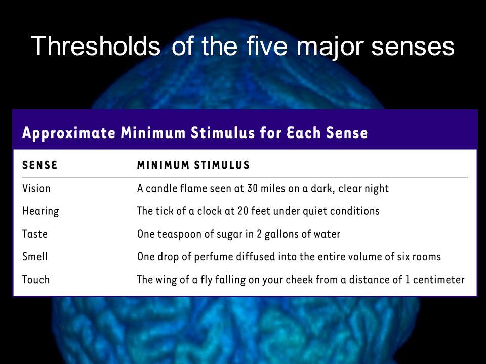 Thresholds of the five major senses