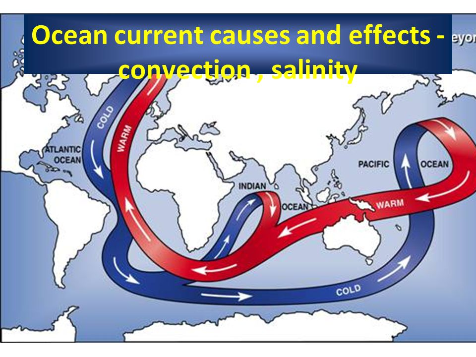 Ocean current causes and effects - convection, salinity