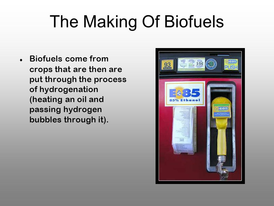 The Making Of Biofuels Biofuels come from crops that are then are put through the process of hydrogenation (heating an oil and passing hydrogen bubbles through it).