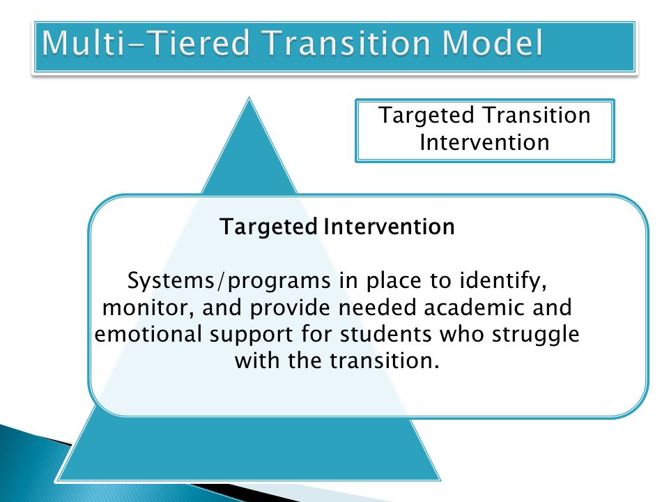 Targeted Intervention Systems/programs in place to identify, monitor, and provide needed academic and emotional support for students who struggle with the transition.