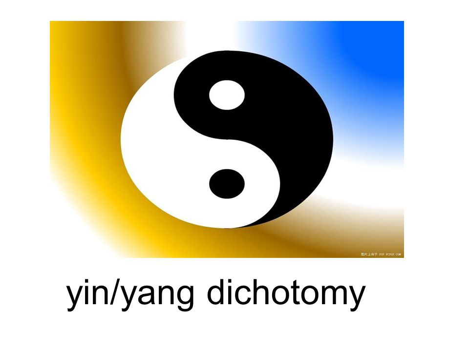 yin/yang dichotomy