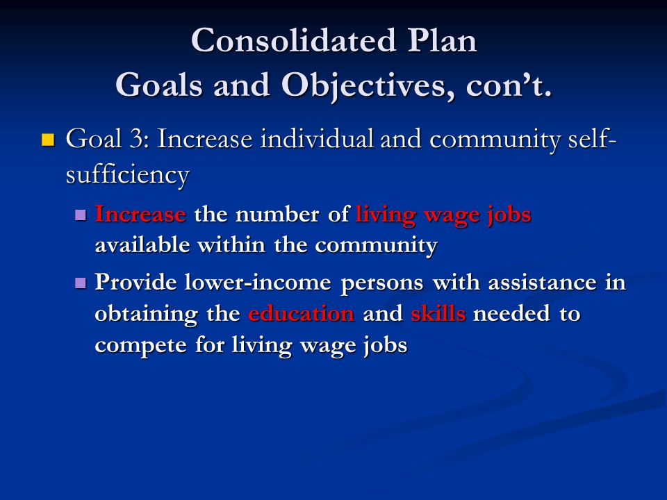 Consolidated Plan Goals and Objectives, con't. Goal 3: Increase individual and community self- sufficiency Goal 3: Increase individual and community s
