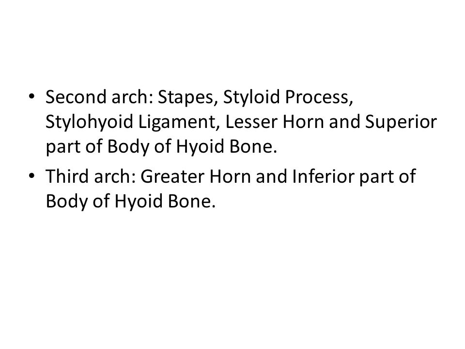 Second arch: Stapes, Styloid Process, Stylohyoid Ligament, Lesser Horn and Superior part of Body of Hyoid Bone. Third arch: Greater Horn and Inferior