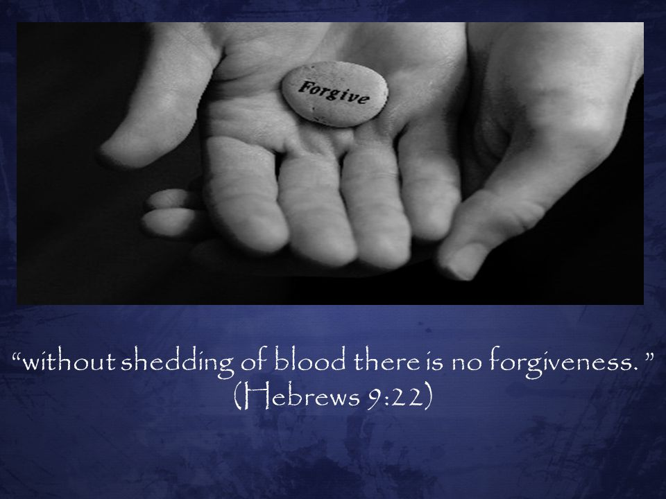 without shedding of blood there is no forgiveness. (Hebrews 9:22)