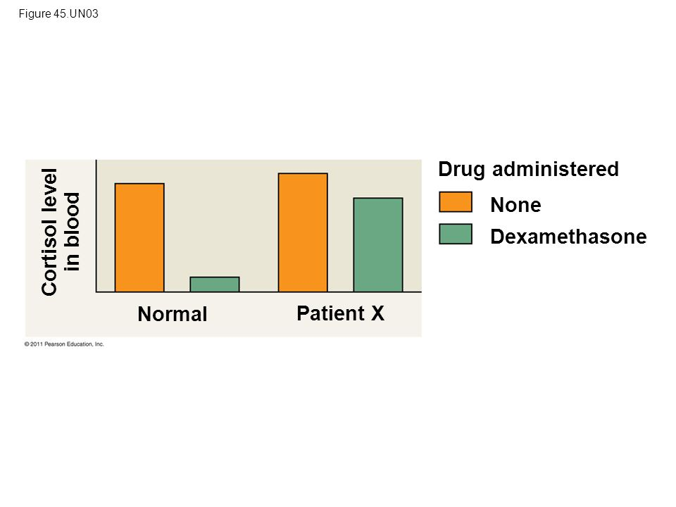 Figure 45.UN03 Drug administered None Dexamethasone Normal Patient X Cortisol level in blood