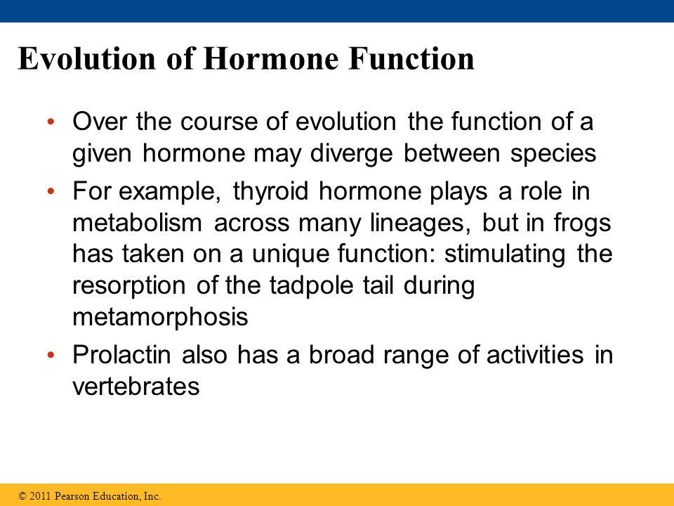 Evolution of Hormone Function Over the course of evolution the function of a given hormone may diverge between species For example, thyroid hormone pl