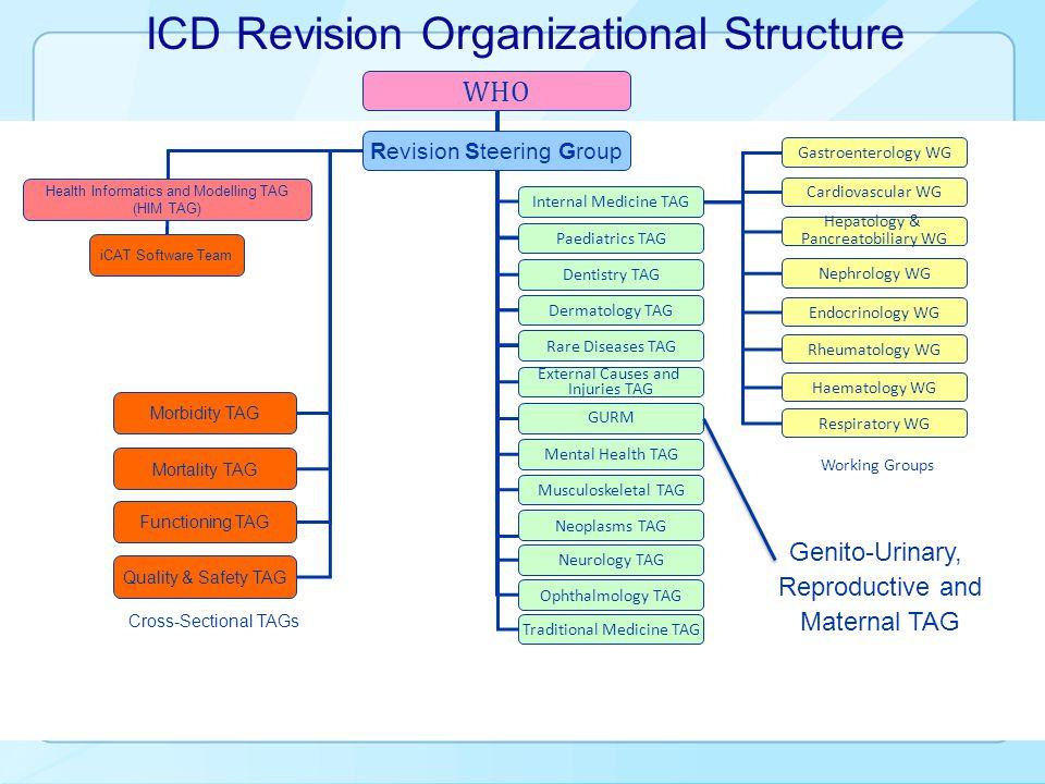 ICD Revision Organizational Structure Gastroenterology WG Cardiovascular WG Hepatology & Pancreatobiliary WG Nephrology WG Endocrinology WG Rheumatolo