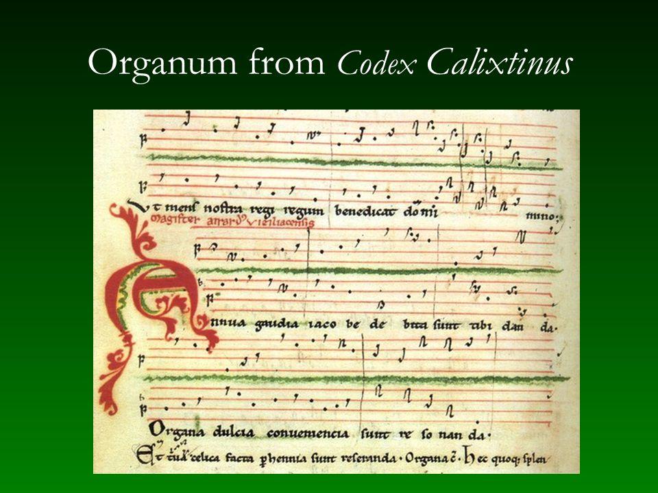 Organum from Codex Calixtinus