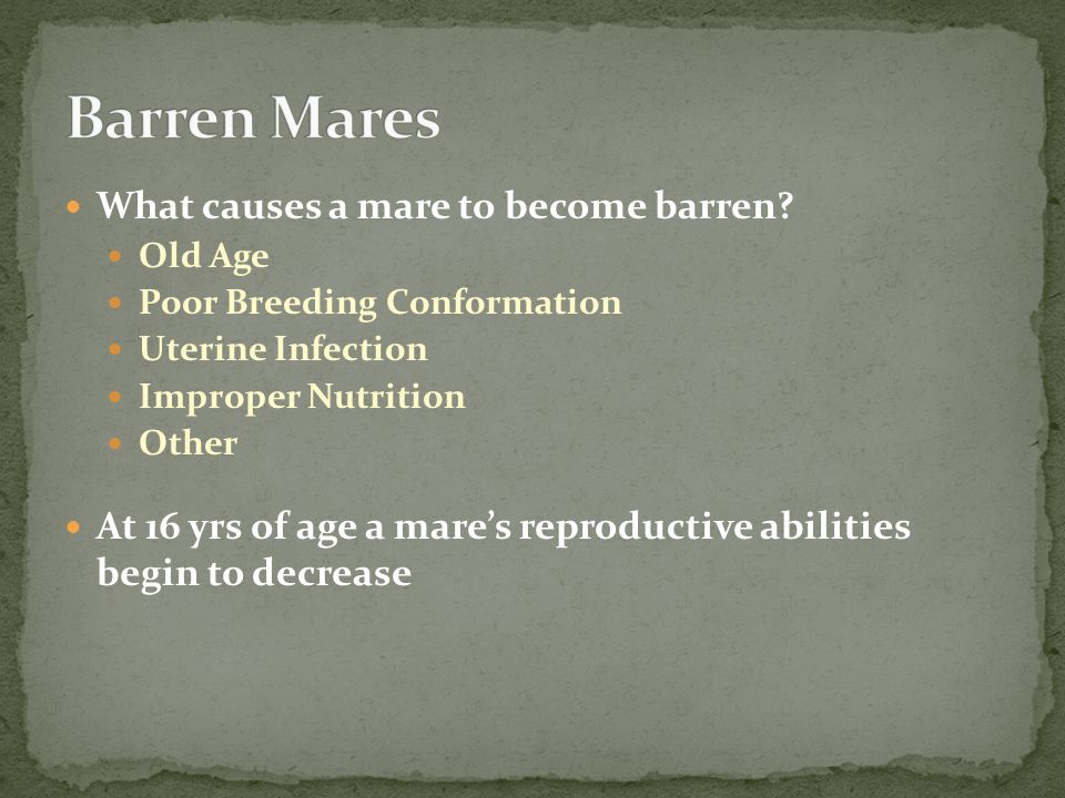 What causes a mare to become barren.