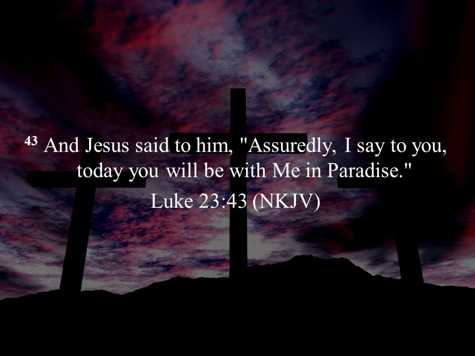 43 And Jesus said to him,
