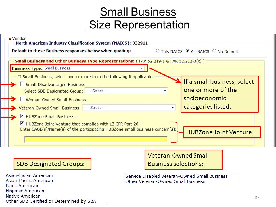 Small Business Size Representation 38 SDB Designated Groups: Veteran-Owned Small Business selections: If a small business, select one or more of the socioeconomic categories listed.