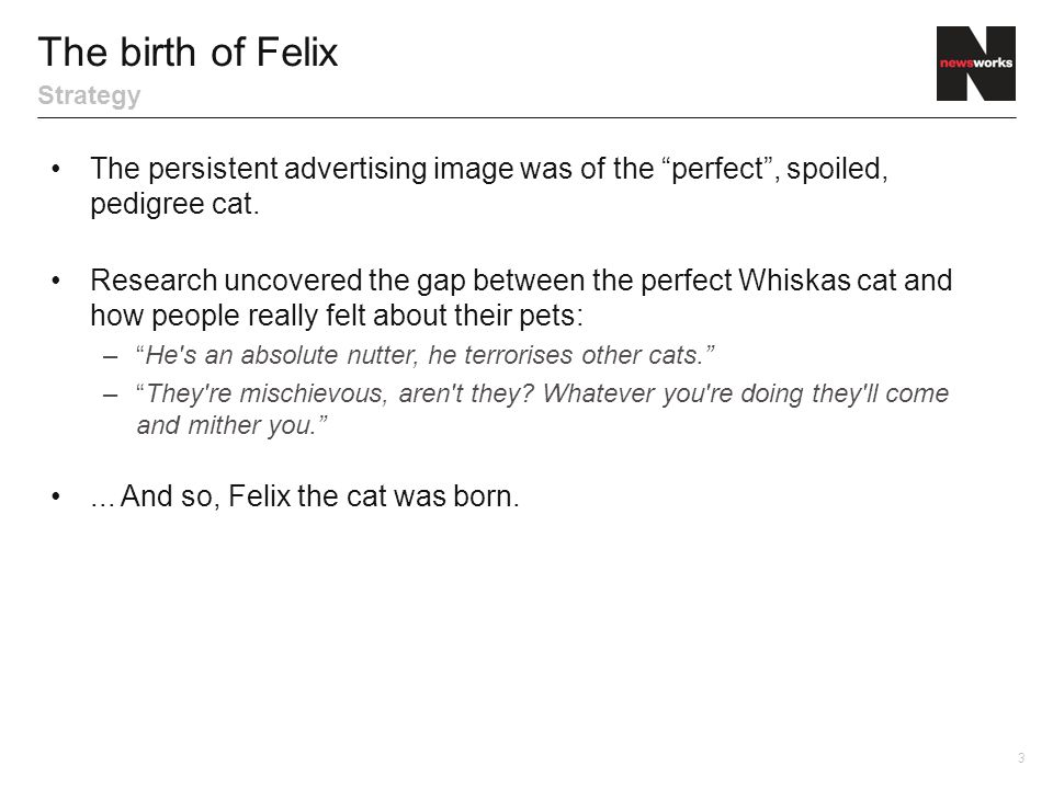 The persistent advertising image was of the perfect , spoiled, pedigree cat.