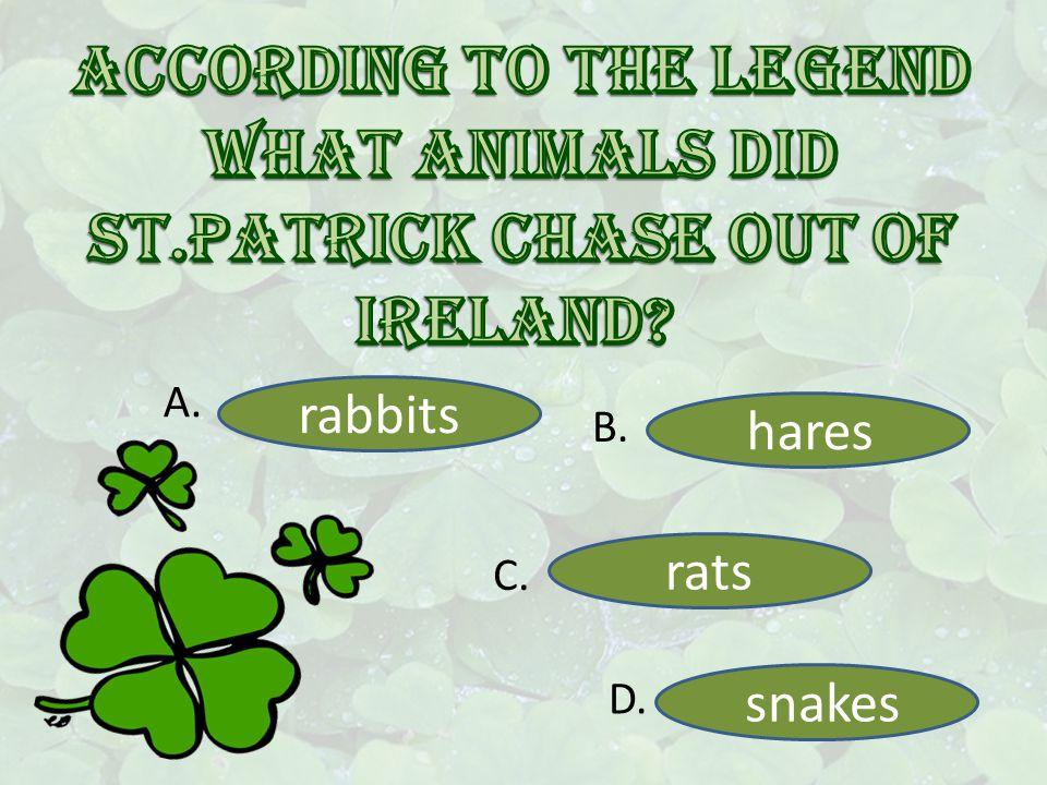 rabbits hares rats snakes A. B. C. D.