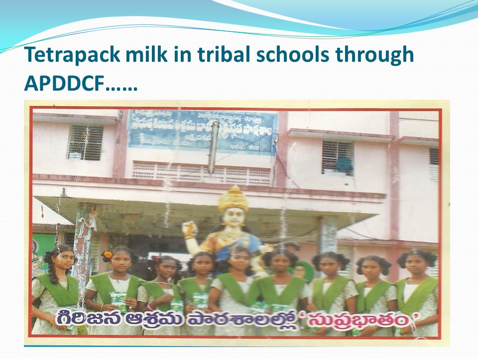 Tetrapack milk in tribal schools through APDDCF……