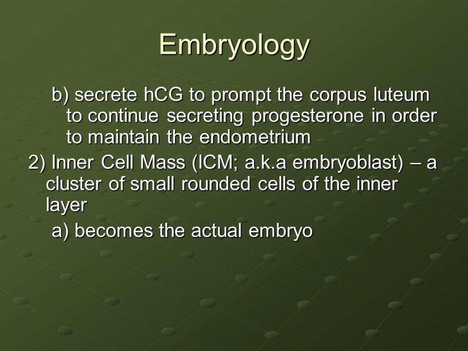 Embryology b) secrete hCG to prompt the corpus luteum to continue secreting progesterone in order to maintain the endometrium 2) Inner Cell Mass (ICM;