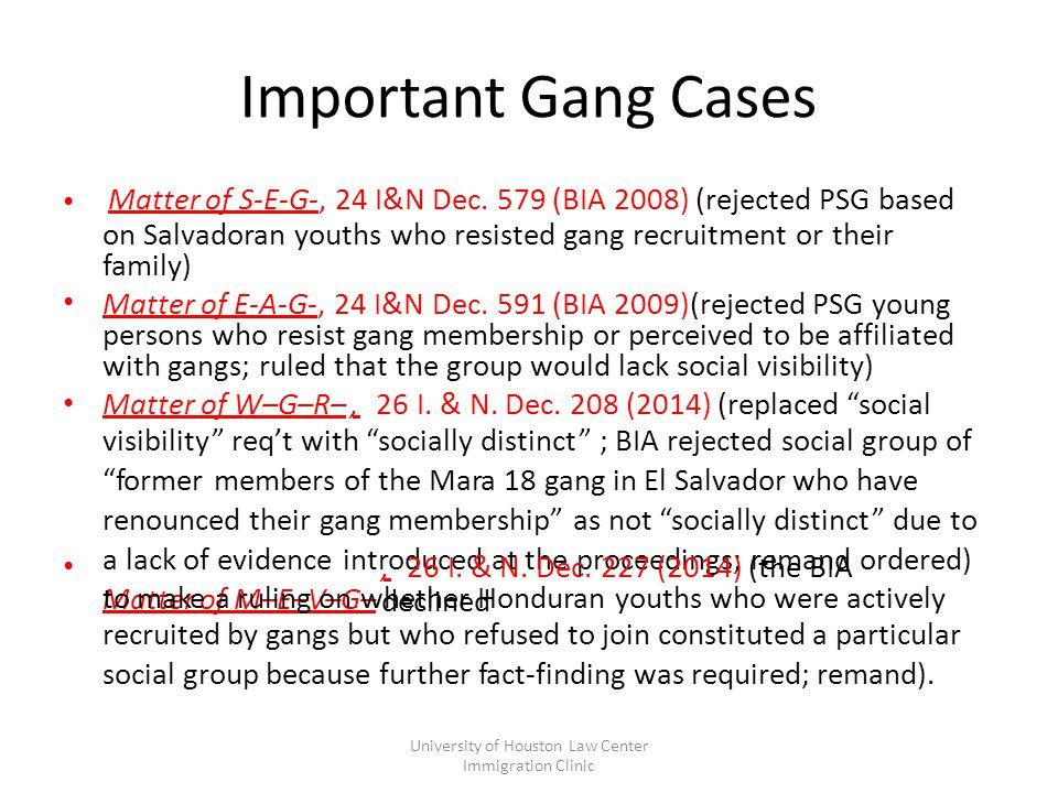 Important Gang Cases Matter of S-E-G-, 24 I&N Dec.