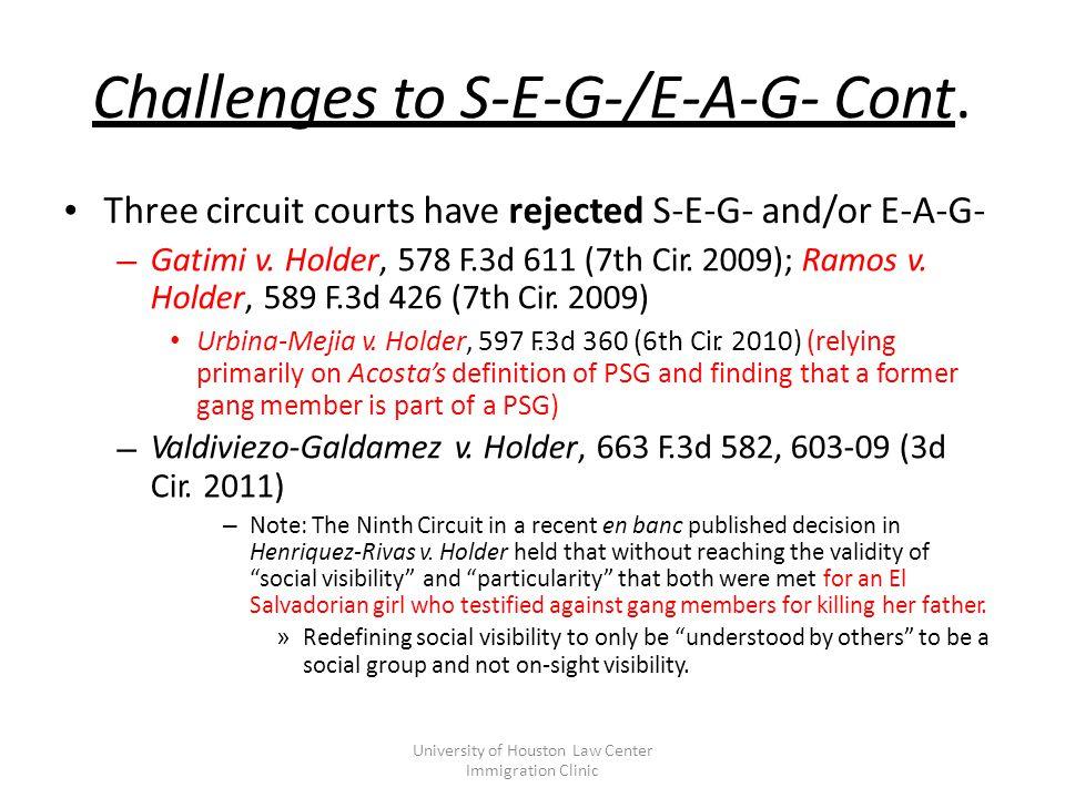 Challenges to S-E-G-/E-A-G- Cont.