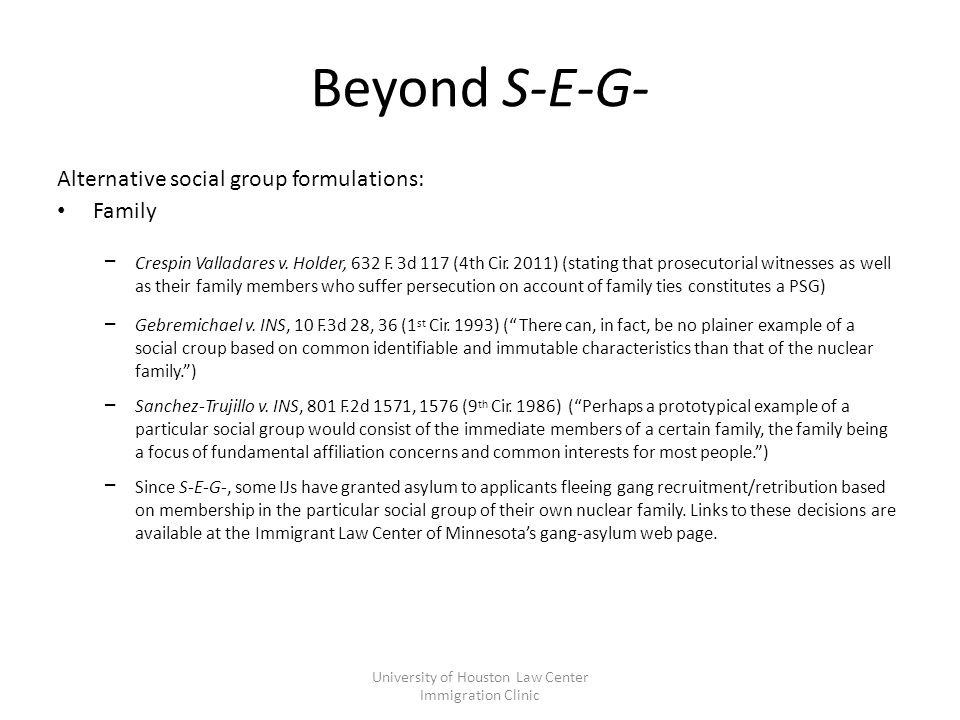 Beyond S-E-G- Alternative social group formulations: Family – Crespin Valladares v.
