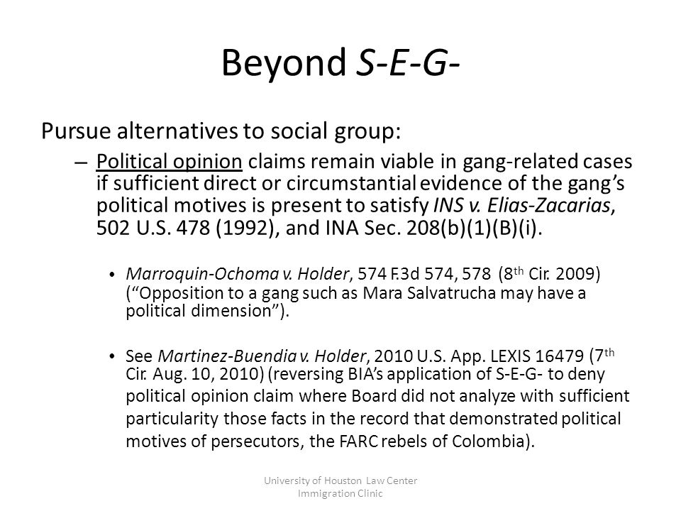 Beyond S-E-G- Pursue alternatives to social group: – Political opinion claims remain viable in gang-related cases if sufficient direct or circumstantial evidence of the gang's political motives is present to satisfy INS v.