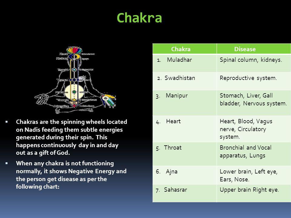 Chakra Disease 1. MuladharSpinal column, kidneys.