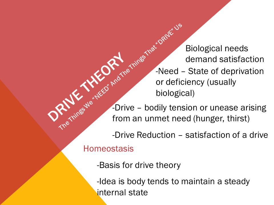 DRIVE THEORY The Things We NEED And The Things That DRIVE Us Biological needs demand satisfaction -Need – State of deprivation or deficiency (usually biological) -Drive – bodily tension or unease arising from an unmet need (hunger, thirst) -Drive Reduction – satisfaction of a drive Homeostasis -Basis for drive theory -Idea is body tends to maintain a steady internal state