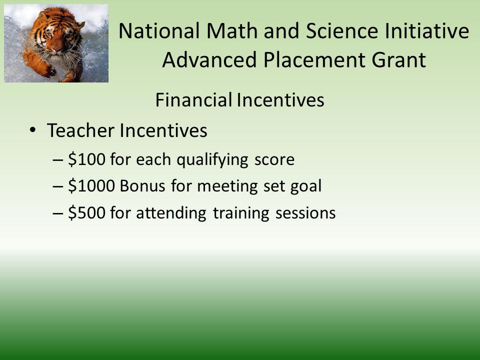 Access to the most current and effective materials Online Resources Saturday Study Sessions Extra Tutoring Sessions National Math and Science Initiative Advanced Placement Grant