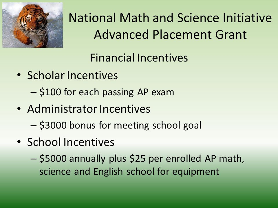Financial Incentives Teacher Incentives – $100 for each qualifying score – $1000 Bonus for meeting set goal – $500 for attending training sessions National Math and Science Initiative Advanced Placement Grant
