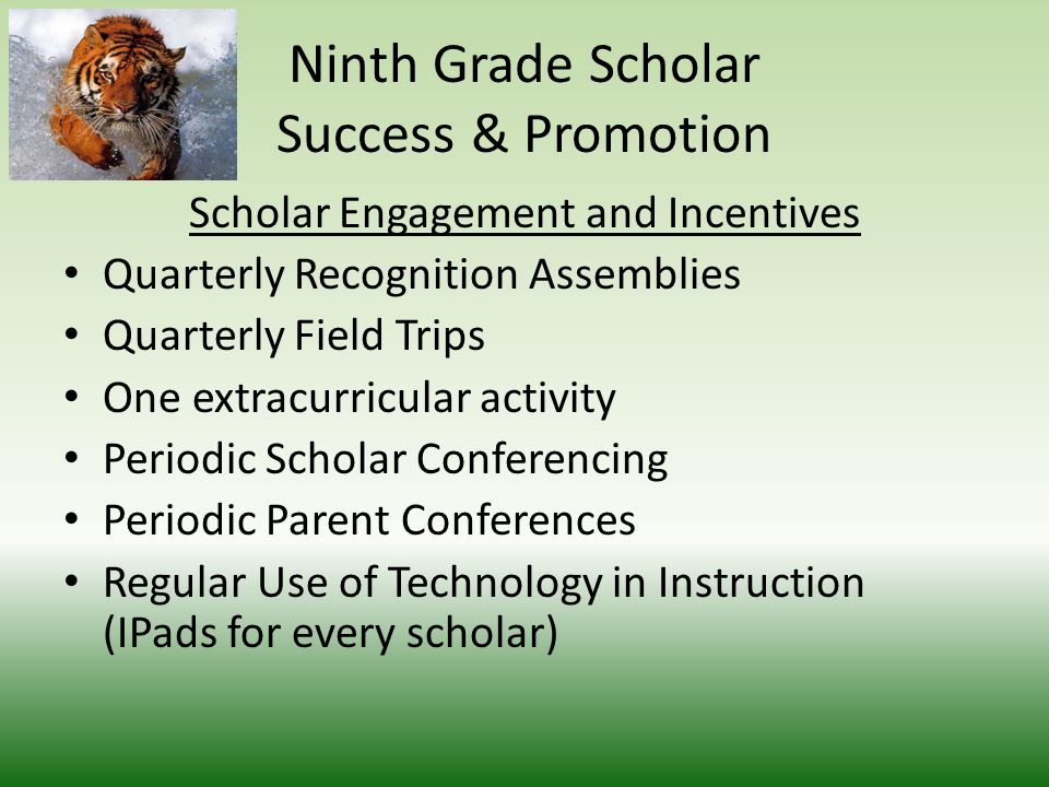 Ninth Grade Scholar Success & Promotion Teaming A team of five core teachers teaching a cohort of Ninth Grade Students Teachers have a common planning period Class size reduced