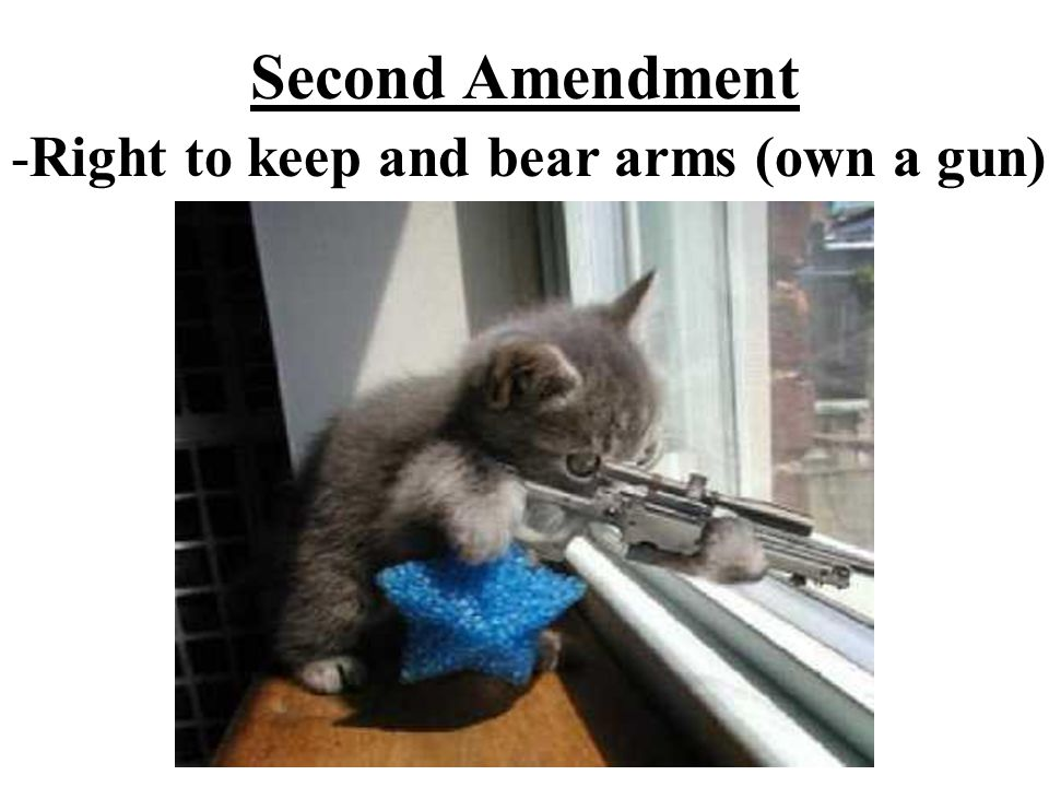 Second Amendment -Right to keep and bear arms (own a gun)