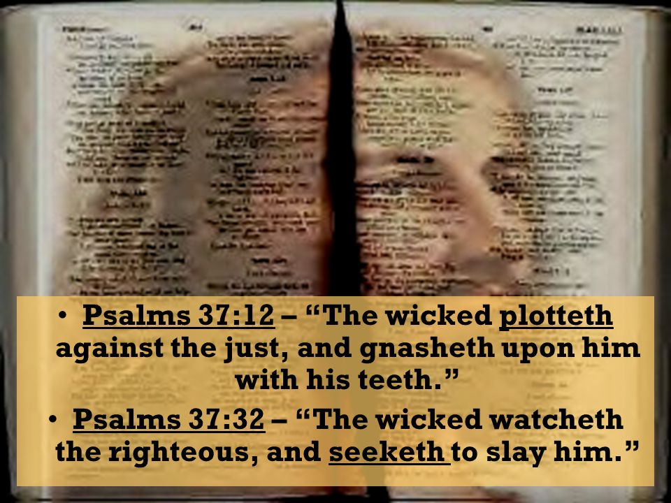 Psalms 37:12 – The wicked plotteth against the just, and gnasheth upon him with his teeth. Psalms 37:32 – The wicked watcheth the righteous, and seeketh to slay him.