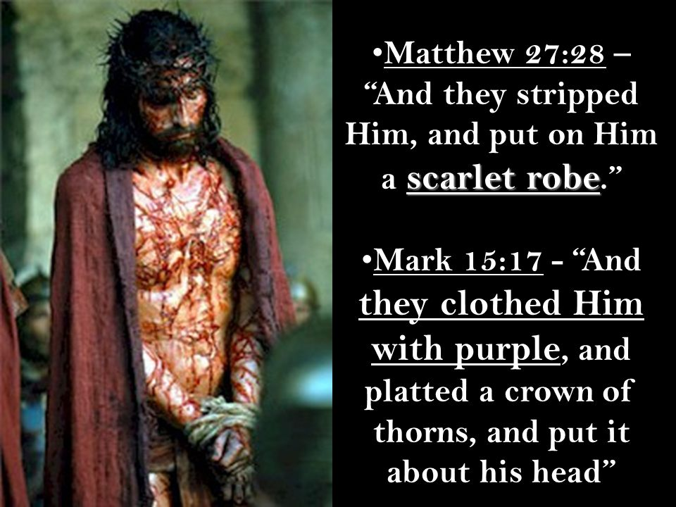 scarlet robe Matthew 27:28 – And they stripped Him, and put on Him a scarlet robe. Mark 15:17 - And they clothed Him with purple, and platted a crown of thorns, and put it about his head