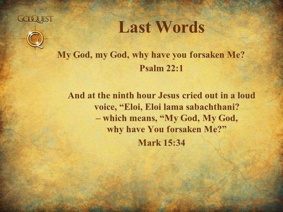 Last Words My God, my God, why have you forsaken Me.