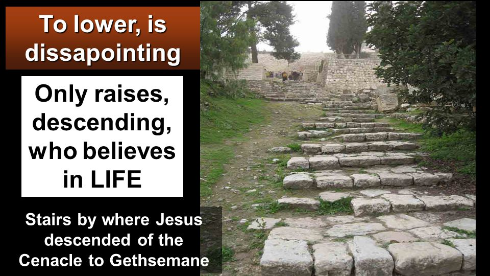 MOUNT OF THE OLIVES And when they had sung a hymn, they went out to the Mount of Olives.