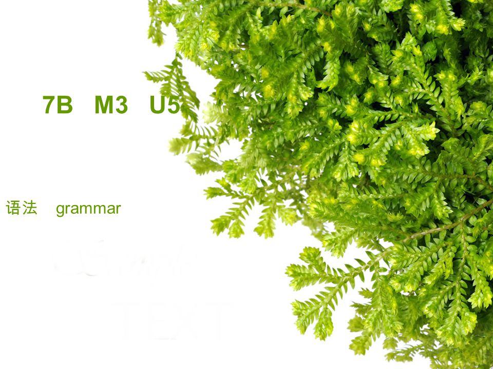 7B M3 U5 语法 grammar