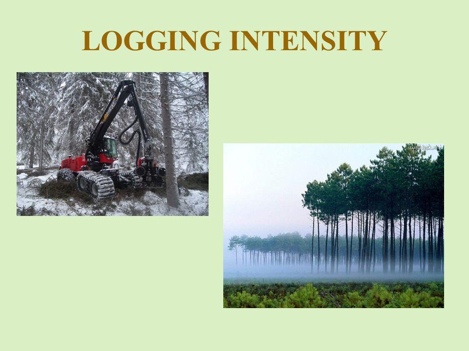 LOGGING INTENSITY