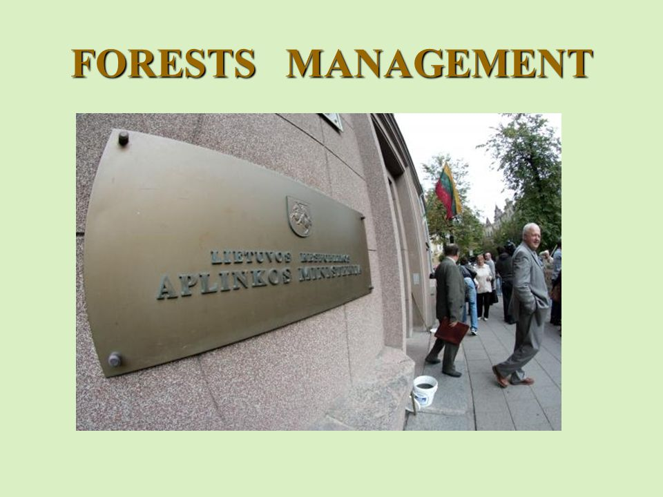 FORESTS MANAGEMENT