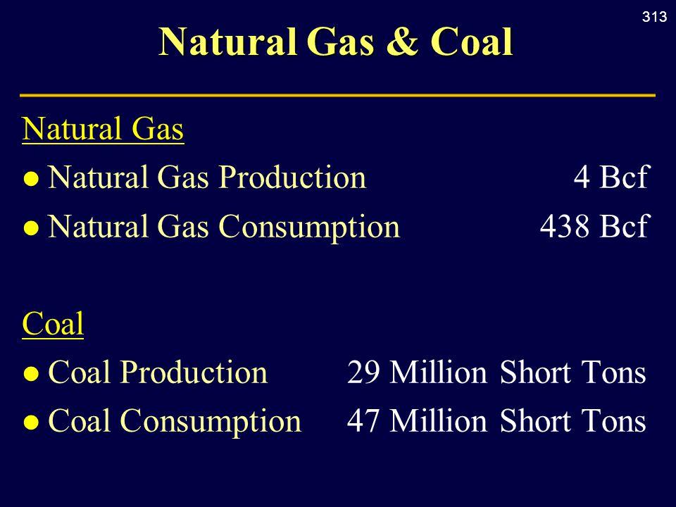 313 Natural Gas & Coal Natural Gas l Natural Gas Production4 Bcf l Natural Gas Consumption438 Bcf Coal l Coal Production29 Million Short Tons l Coal C