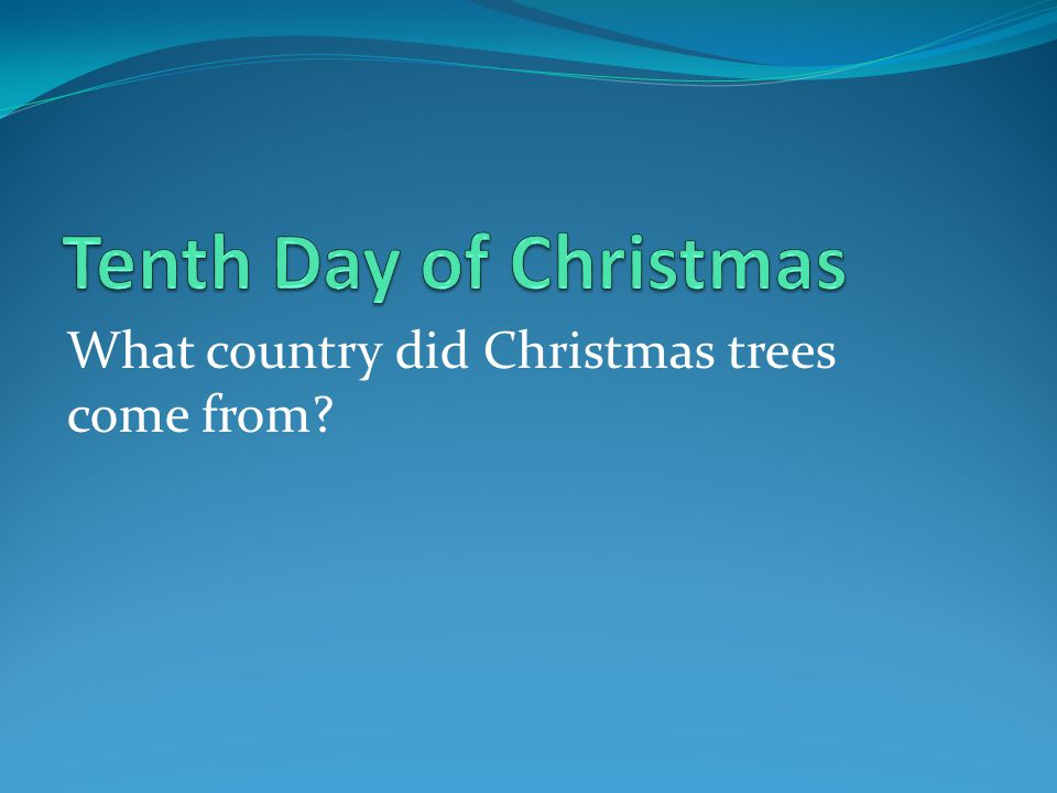 What country did Christmas trees come from