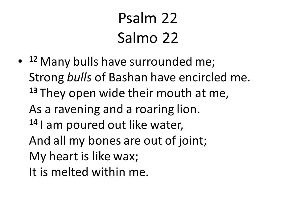 Psalm 22 Salmo 22 12 Many bulls have surrounded me; Strong bulls of Bashan have encircled me.