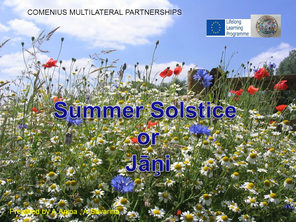 COMENIUS MULTILATERAL PARTNERSHIPS Prepared by A.Anina, A,Savarina