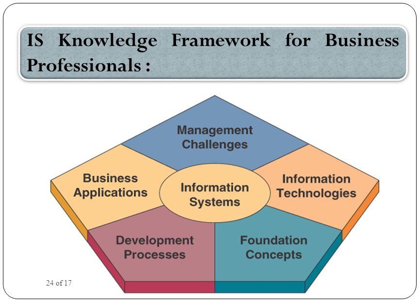 IS Knowledge Framework for Business Professionals : 24 of 17
