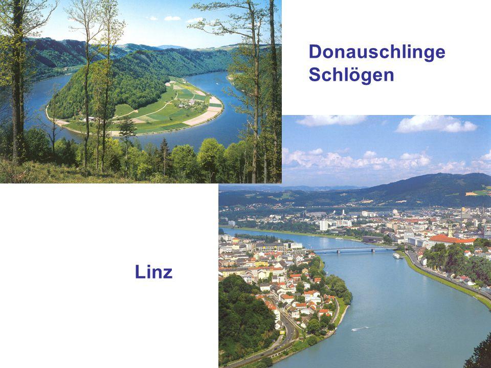 Linz Donauschlinge Schlögen