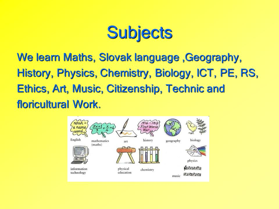 Subjects We learn Maths, Slovak language,Geography, History, Physics, Chemistry, Biology, ICT, PE, RS, Ethics, Art, Music, Citizenship, Technic and fl