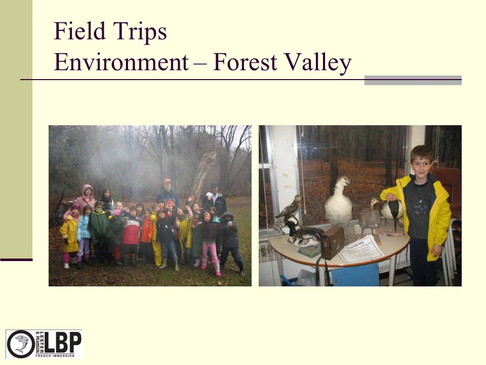 Field Trips Environment – Forest Valley
