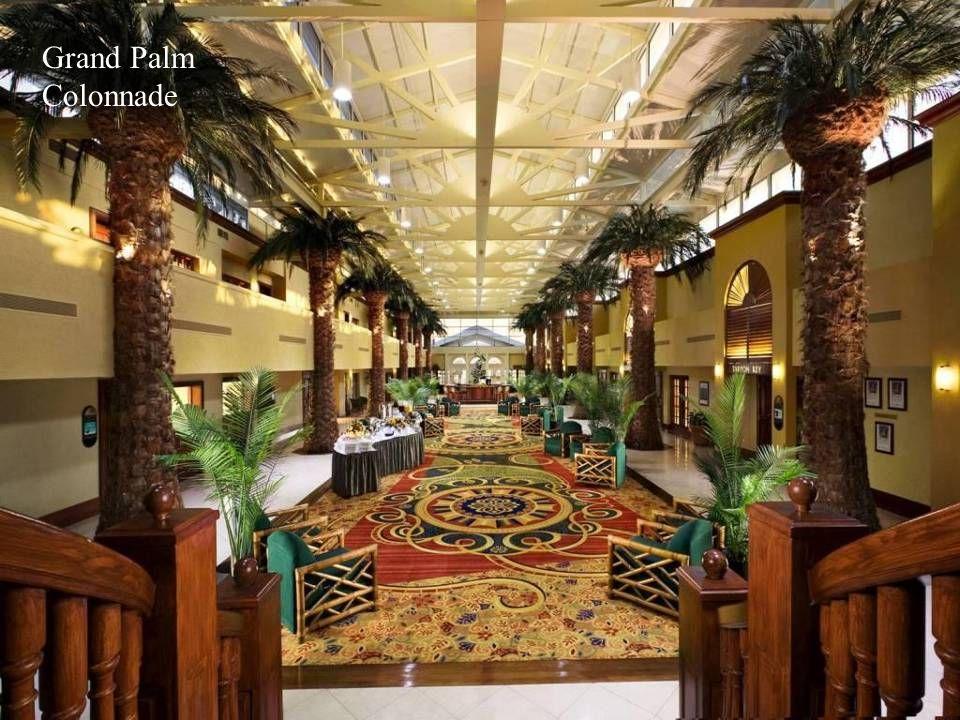 Grand Palm Colonnade