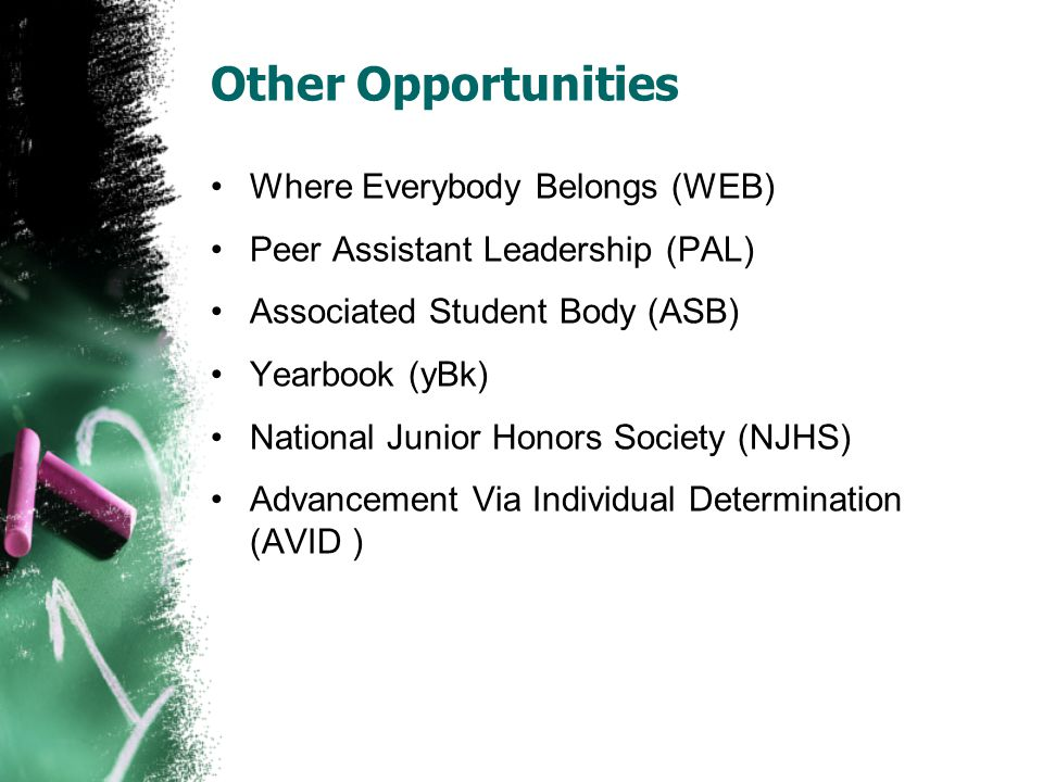 Other Opportunities Where Everybody Belongs (WEB) Peer Assistant Leadership (PAL) Associated Student Body (ASB) Yearbook (yBk) National Junior Honors
