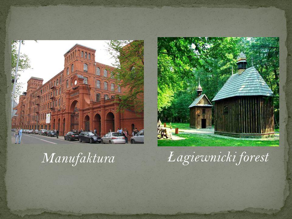 Ł agiewnicki forest Manufaktura
