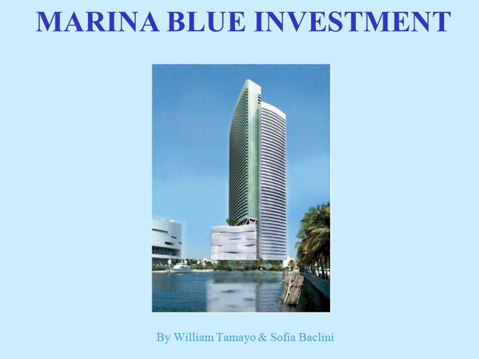 By William Tamayo & Sofia Baclini MARINA BLUE INVESTMENT